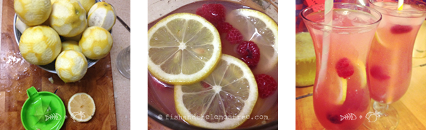 Raspberry Lemonade - Amie Mason copyright 2013