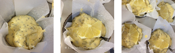 Lemon Chia Seed Muffins - Amie Mason copyright 2013