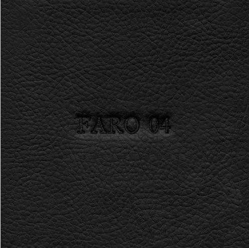 FARO 4.png