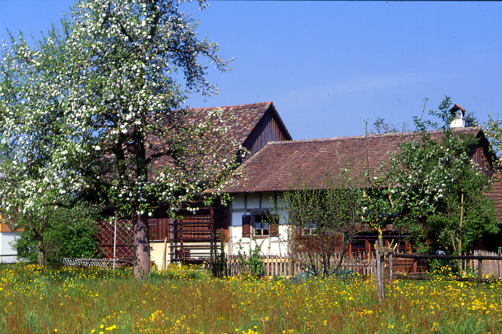 Bohlenständerhaus, Oberaach/Amriswil