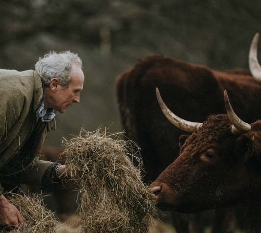 Pipers Farm Ruby Red Peter Greig what's the beef with meat