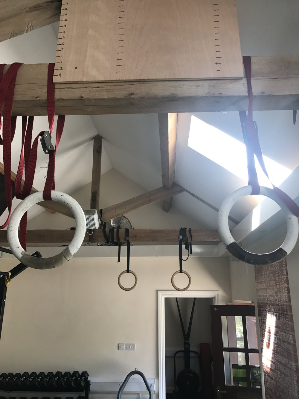 BNAthlete gymnastic rings and suspension trainers