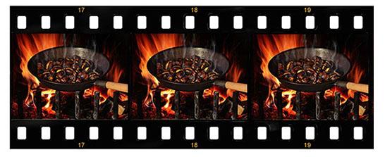 Shutterstock Image ID:490275922; Copyright:  Gina Vescovi  & Shutterstock Image ID:519341473; Copyright:  Protasov AN