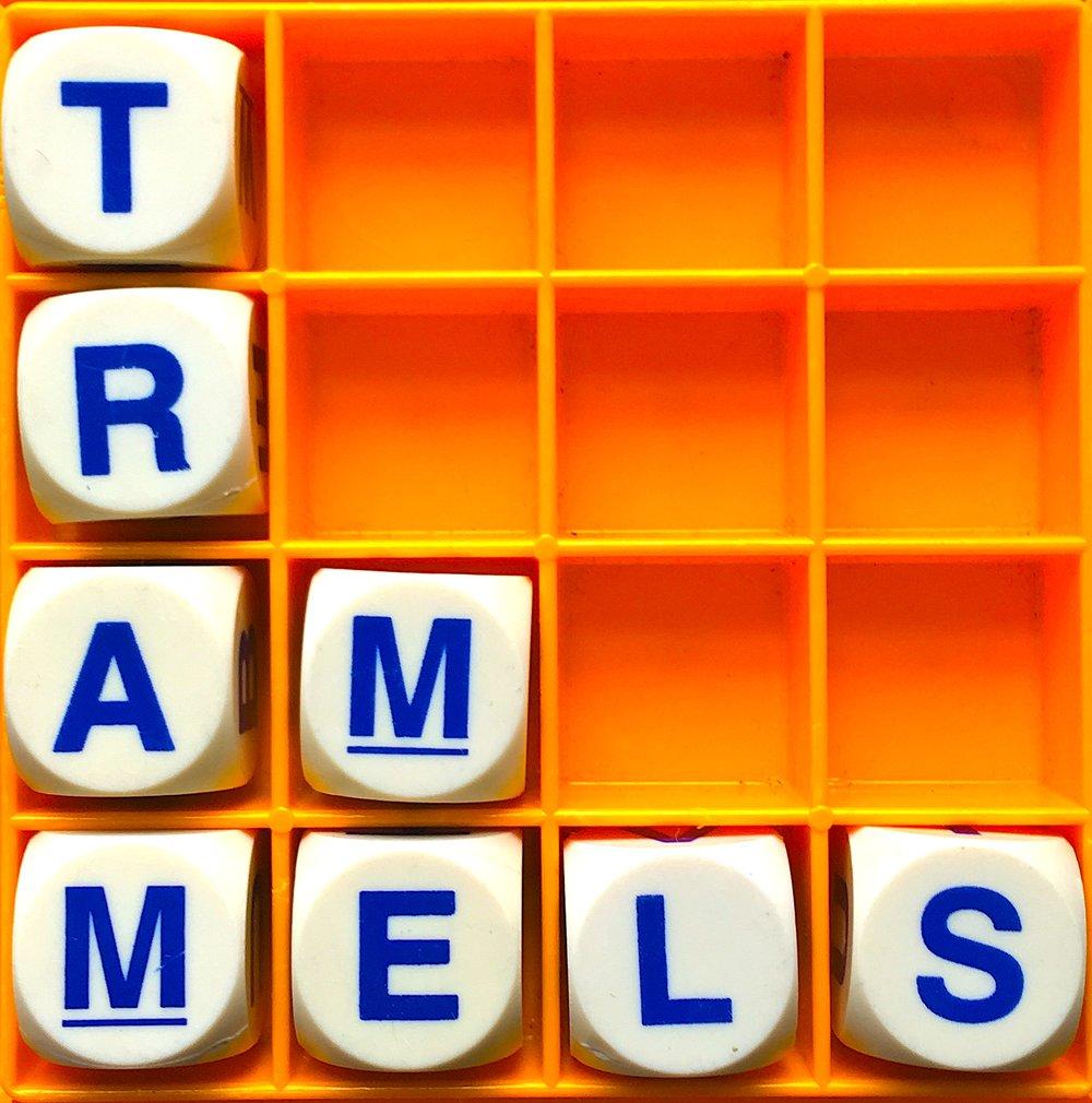 A84 trammels logo.jpg