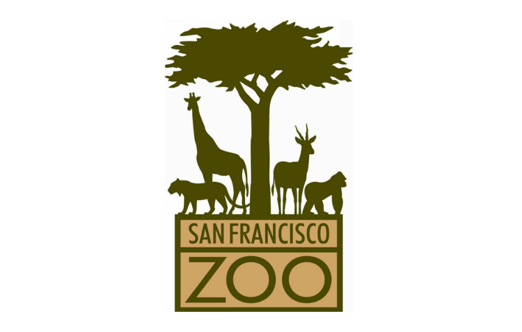 San Francisco Zoo    Strategic planning project with an emphasis on business planning to create and improve revenue streams