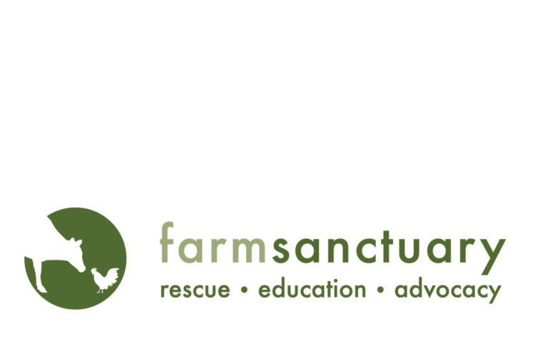 Farm Sanctuary      Providing financial analysis, assessment, and guidance to evaluate opportunities for growth and development