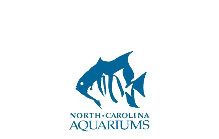 North Carolina Aquariums    Facilitating a strategic planning process for the state's four aquarium sites with staff from all facilities