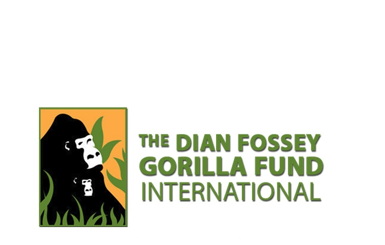 Dian Fossey Gorilla Fund    Facilitating a retreat for the board and staff, helping to develop a short-term action plan for leadership transition