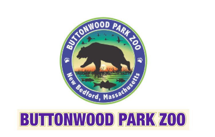 Buttonwood Park Zoo     Assisting the Zoo through the process of assessing and implementing the privatization process