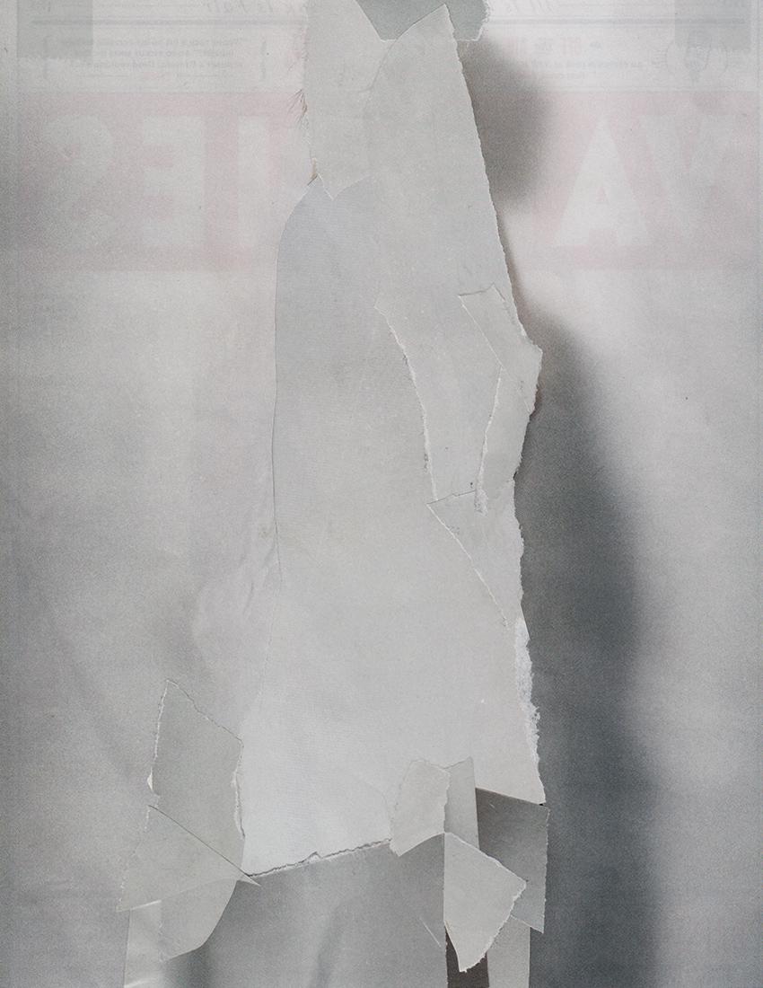 Camouflage-Web-3.jpg