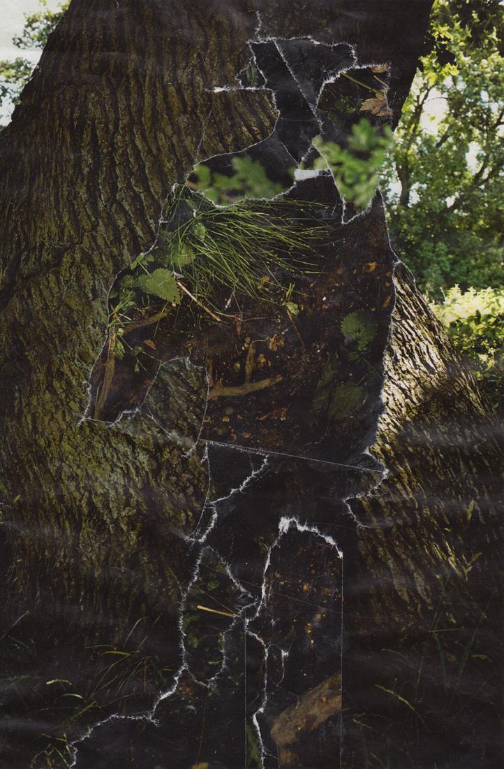 Camouflage-Web-14.jpg