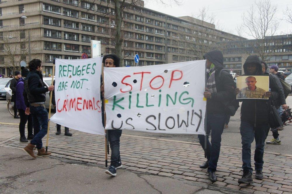 Refugee Report.jpg