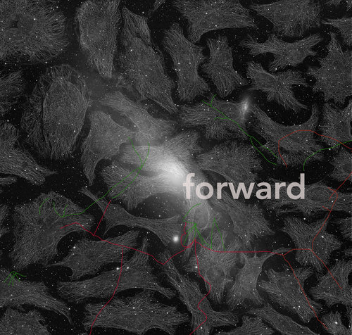 Sonya Dyer,  Forward  (2018). Digital image. Image courtesy of the artist