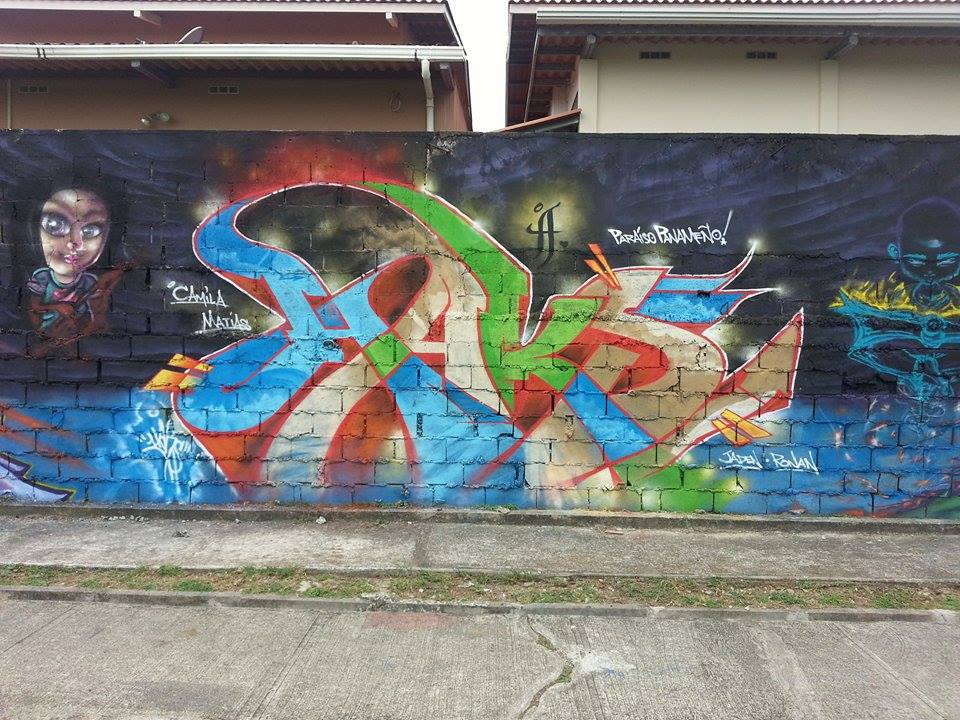 HAKS Piece from Wall w/ CASO3 (Panama City 2014}