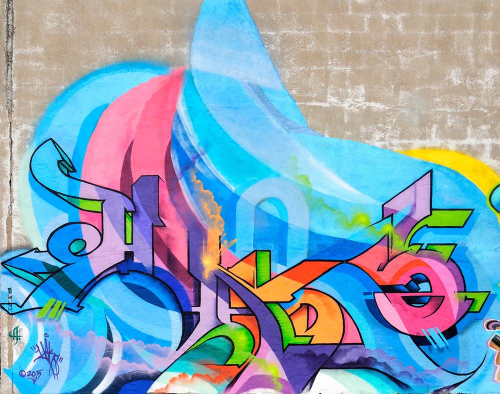 2015_walls_Hochelaga.jpg