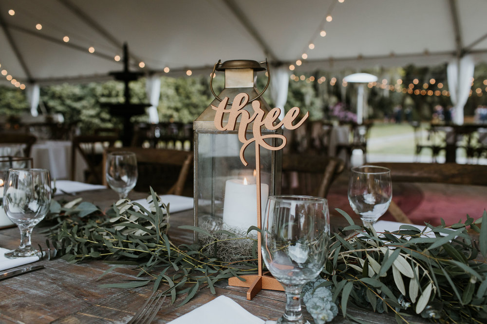 Legare-Waring-House-Charleston-SC-wedding-portrait-photography-379.jpg