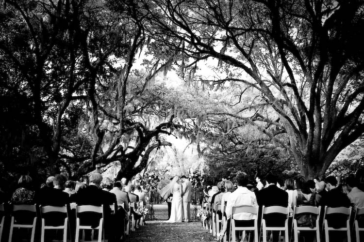 charleston weddings, pawleys island weddings, hilton head weddings, myrtle beach weddings, lowcountry weddings, litchfield plantation