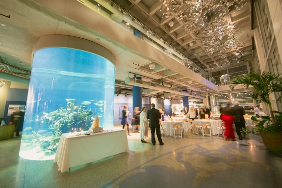 South Carolina Aquarium Joanne Seth Lowcountry