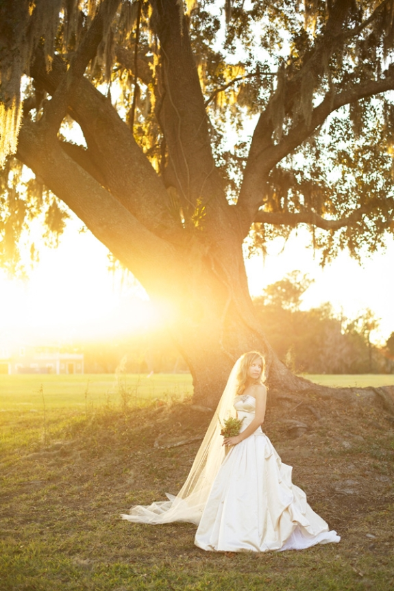 charleston wedding blogs