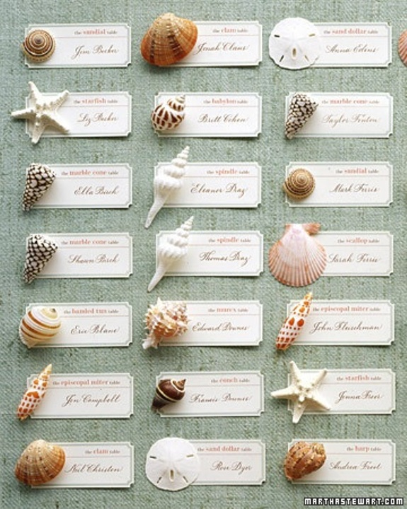 seashell beach wedding decor