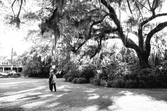 charleston-weddings-magnolia-plantation-15