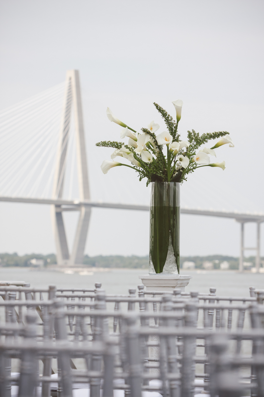 Cori & Steve's South Carolina Aquarium wedding