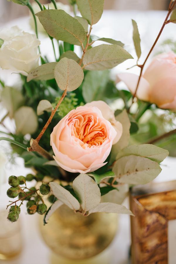 Peach Garden Roses