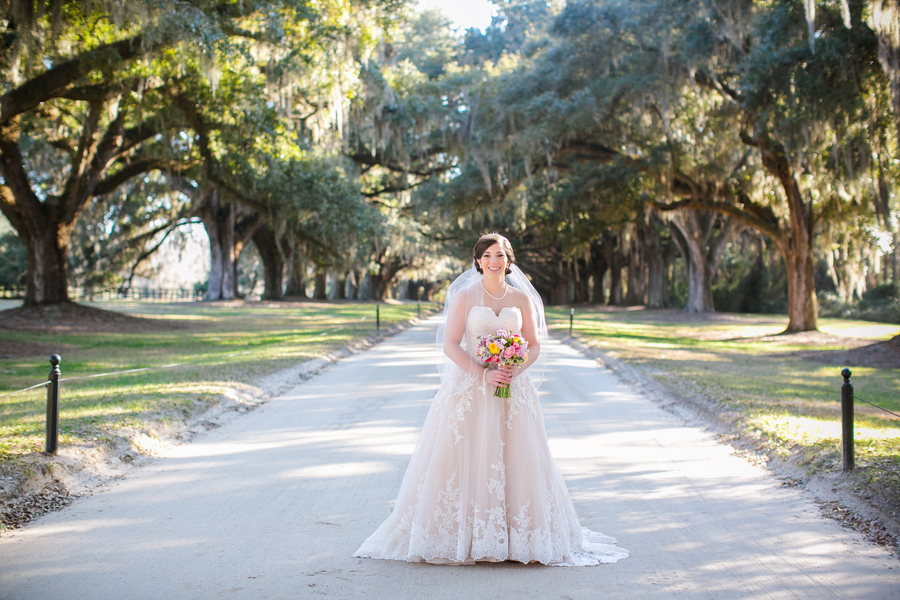 Katie Jones Bjorkman's Charleston Bridal Portraits at Boone Hall Plantation
