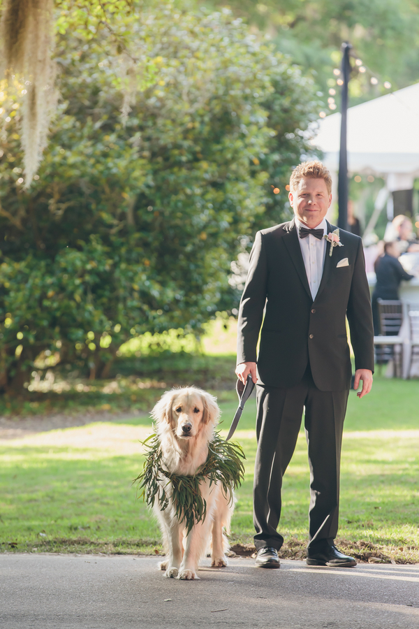 Wedding ceremony dog
