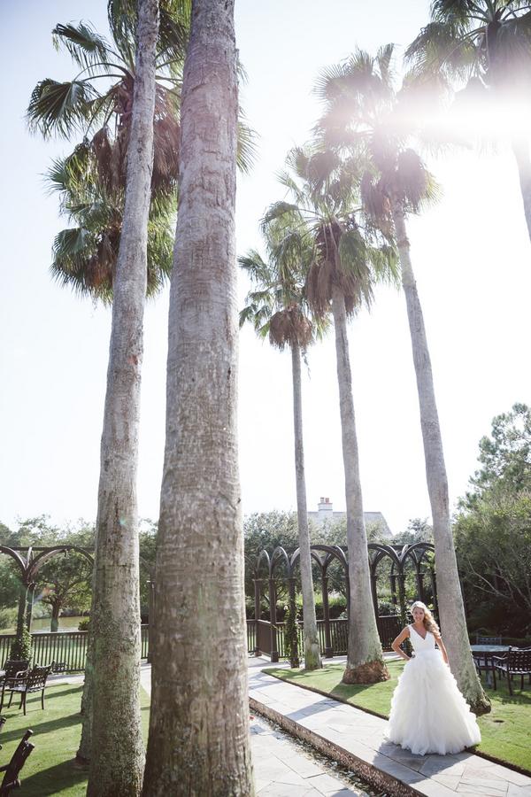 Amelia + Dan Photography