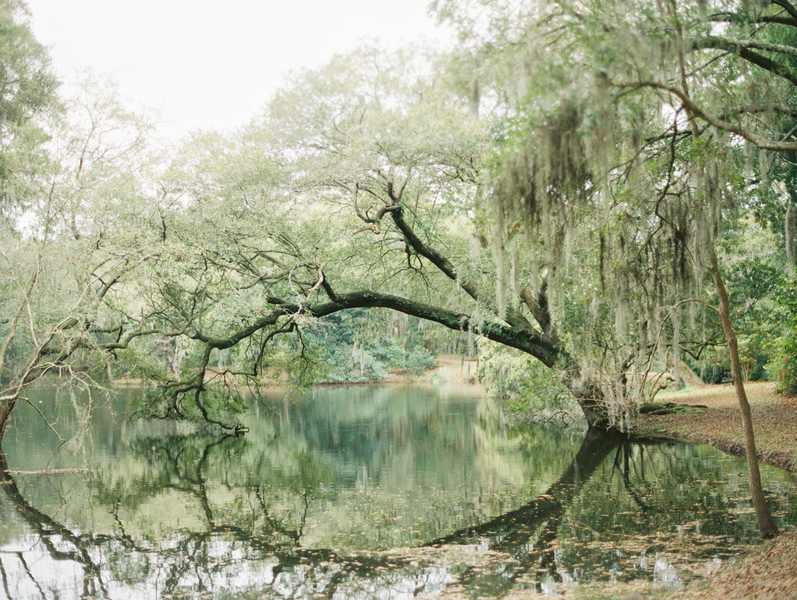 Lowcountry Wedding Portraits