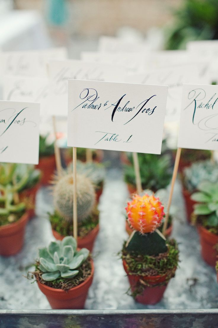 The Ultimate Guide To Succulent Wedding Decor — A Lowcountry Wedding ...