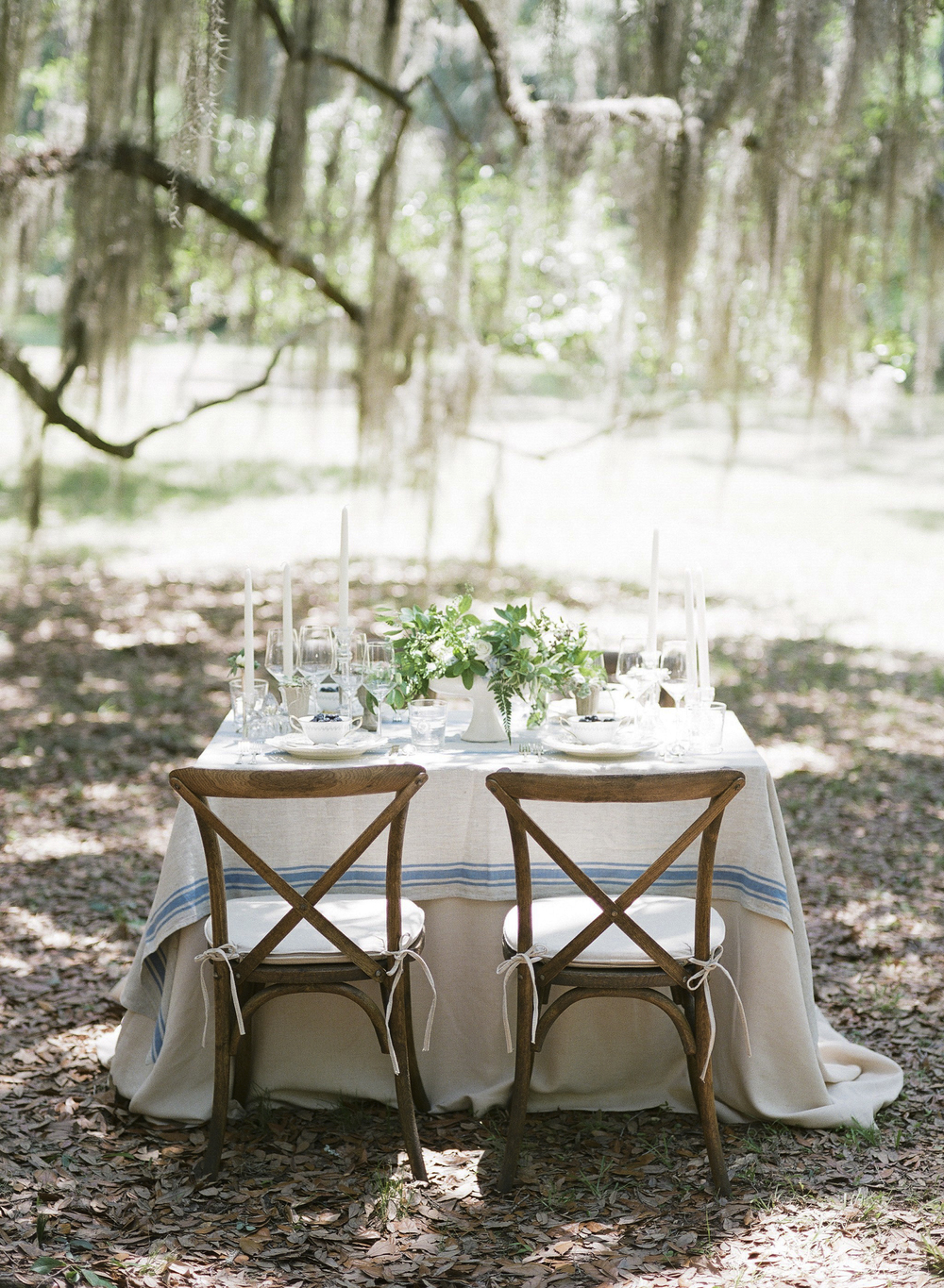 Wormsloe Wonderlust  - image via  Ashley Seawell Photography