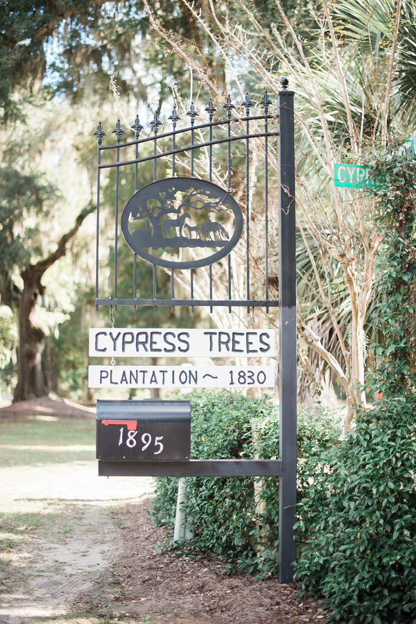 Cypress Trees Plantation wedding on Edisto Island, South Carolina
