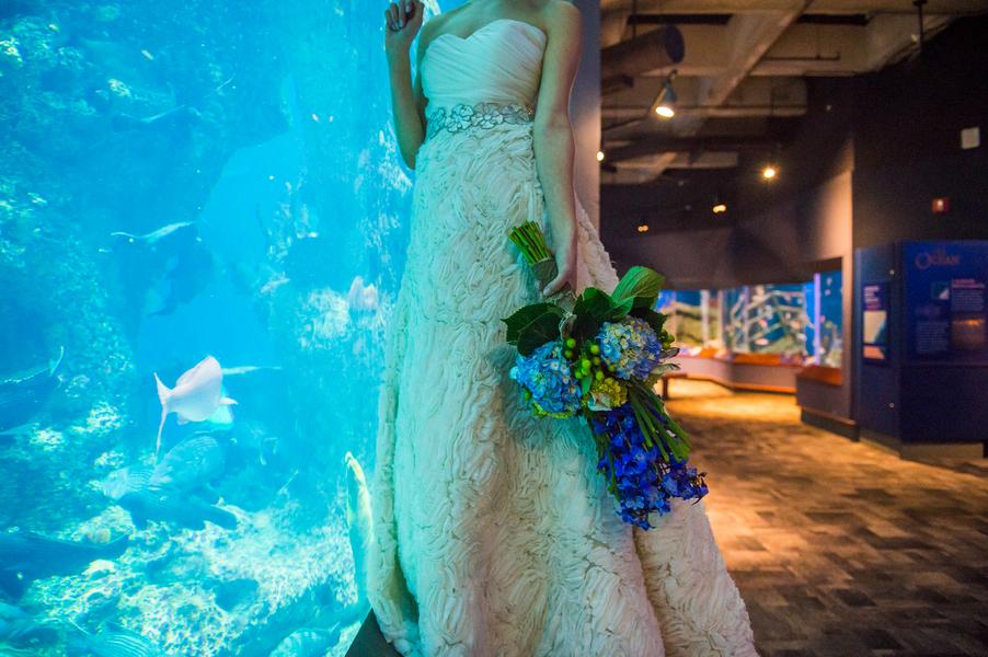 Ocean Themed Inspiration At The South Carolina Aquarium By
