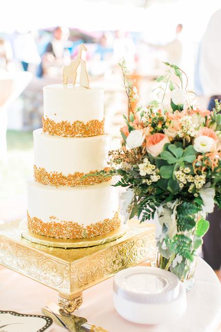 Middleton Plantation wedding on Edisto Island, South Carolina by Jessi Nichols Photography