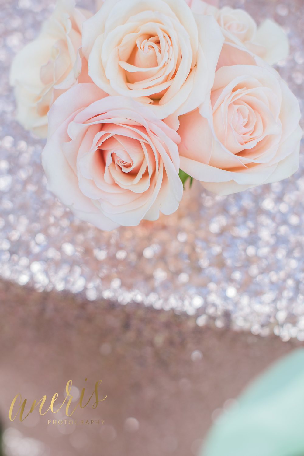 Pale Pink roses by Lush Floral Design