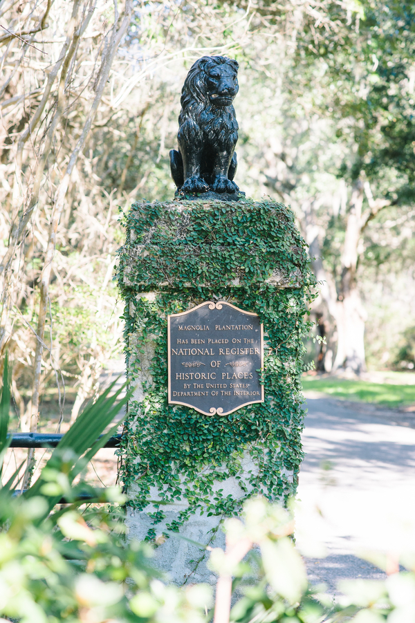 Charleston, Sc engagement at Magnolia Plantation by Aaron and Jillian Photography
