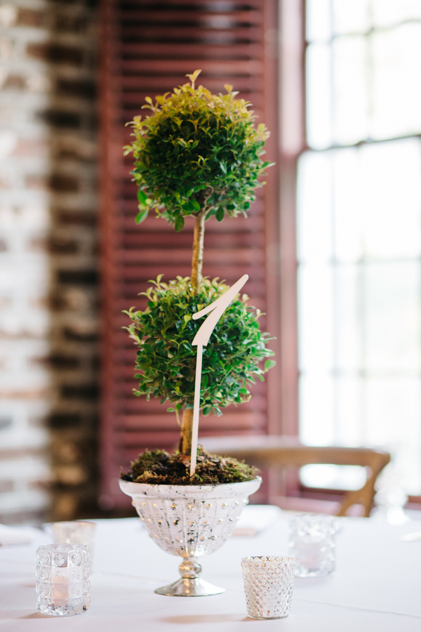 Green topiaries by Charleston Flower Market at Harbour Club wedding
