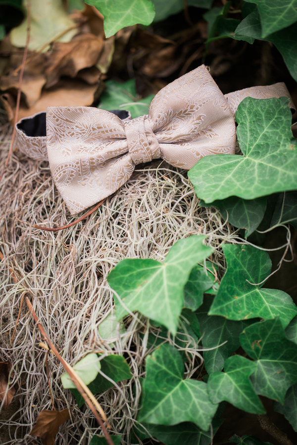 Charleston wedding bow tie