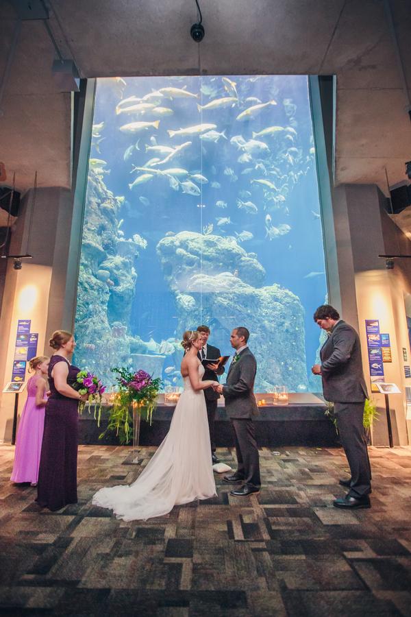 Charleston wedding at The South Carolina Aquarium by Richard Bell Photography