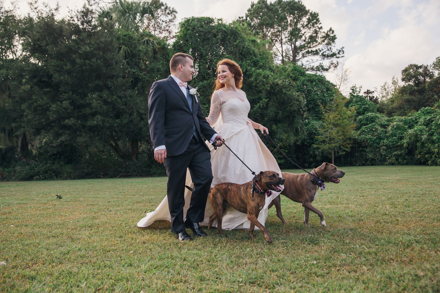 Magnolia Plantation and Gardens wedding