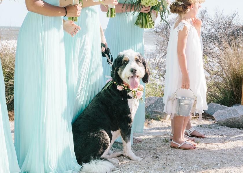 wild-dunes-resort-wedding-19.jpg