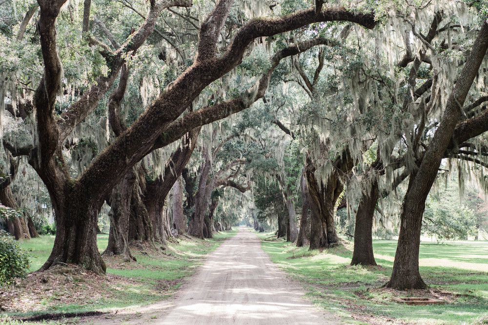Huspa Plantation - Hilton Head, South Carolina wedding venue