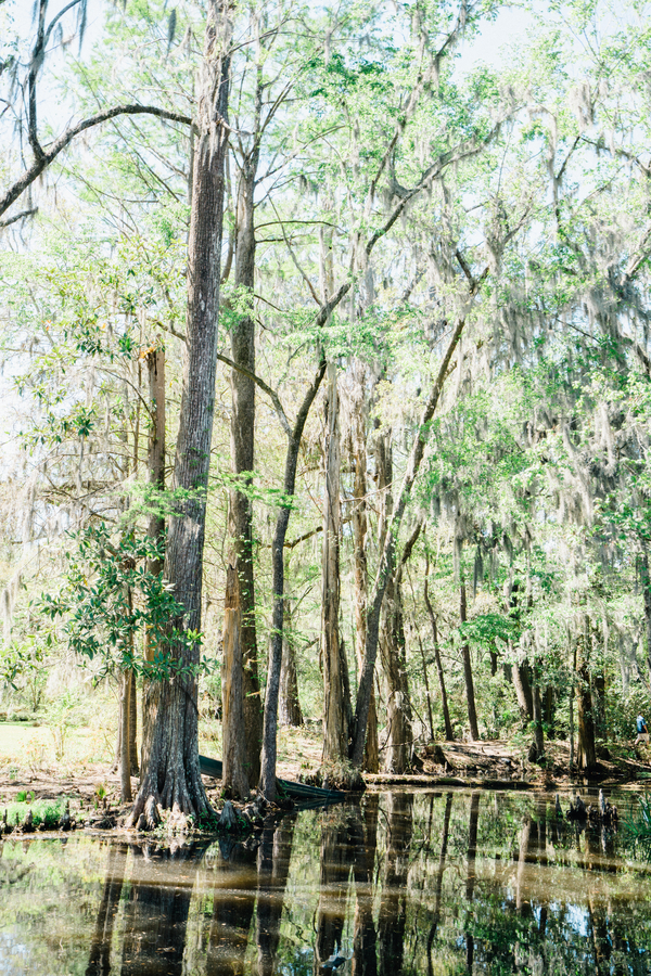 Spanish moss trees in the water at Magnolia Plantation / Charleston wedding photography on A Lowcountry Wedding Magazine