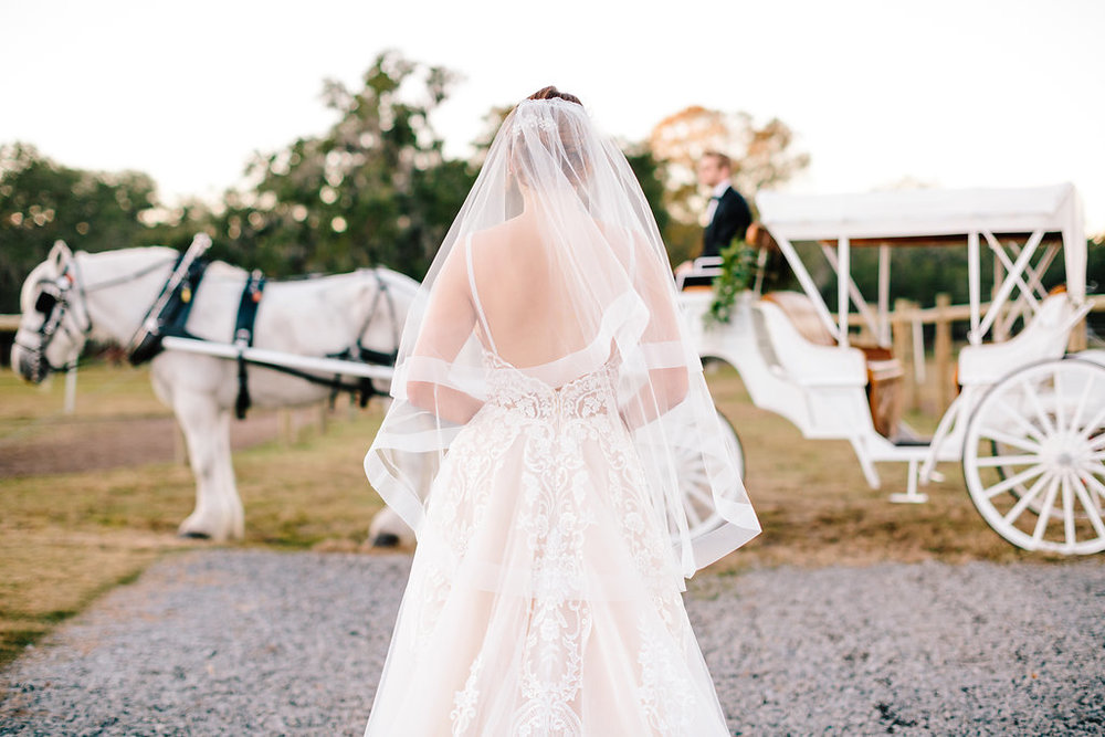 Bride and white horse and carriage  //  Charleston wedding transportation - Old South Carriage company  //  Bride and her maids at Sugah Cain Plantation in front of white horse and Carriage  //  on A Lowocountry Wedding Magazine & Blog
