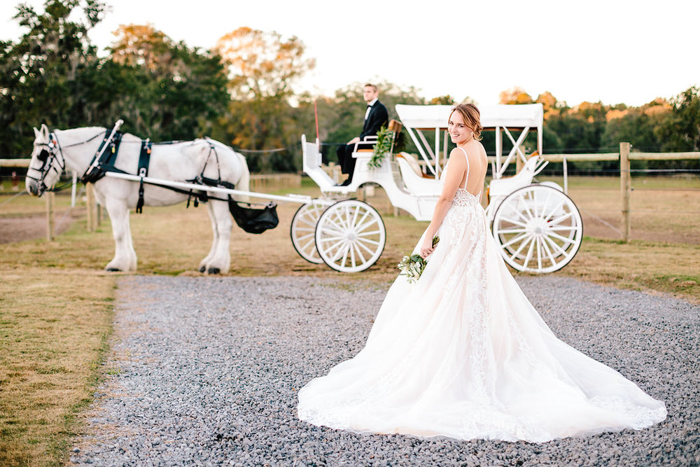 Lowcountry bride at Sugah Cain Plantation on Johns Island, SC  //  Charleston wedding transportation from Old South Carriage company  Bride and her maids at Sugah Cain Plantation in front of white horse and Carriage  //  on A Lowocountry Wedding Magazine & Blog