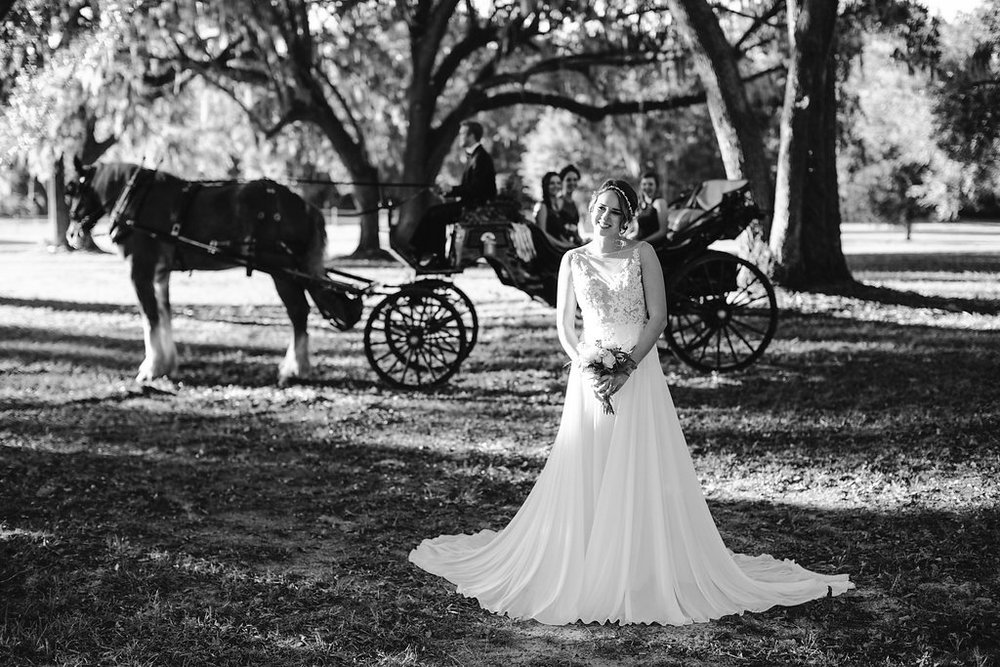 Horse and carriage from Old South Carriage Company at Sugah Cain Plantation  //  on A Lowocountry Wedding Magazine & Blog