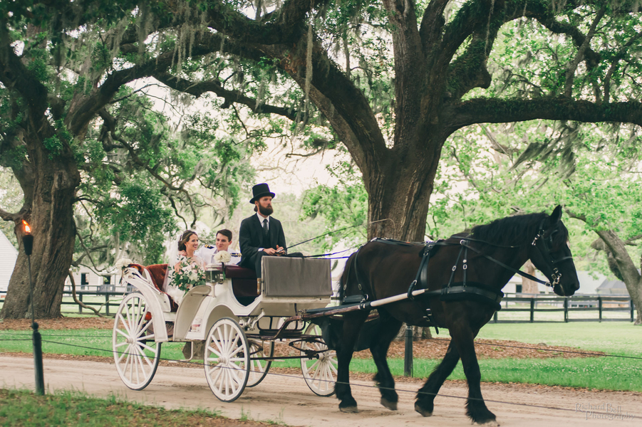 Bride and groom in a white horse & carriage from Charleston coach at Boone Hall Plantation //  A Lowcountry Wedding Magazine & Blog