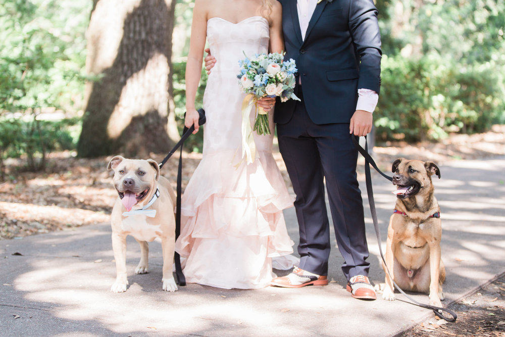 Savannah bride & groom with their dogs in Forsyth Park  //  A Lowcountry Wedding Magazine